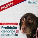 Rafael Maziero consulta população sobre proposta legislativa de proibição de fogos de artifício